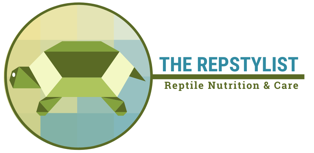 The Repstylist